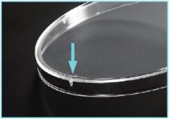 细胞培养皿盖内侧凸点设计