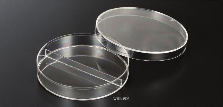 90mm二分格细菌培养皿