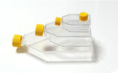 培养瓶10.jpg